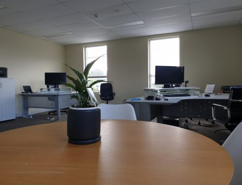 Temerity Digital has a new home